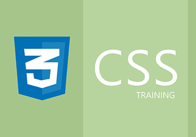 CSS Training in Gurgaon